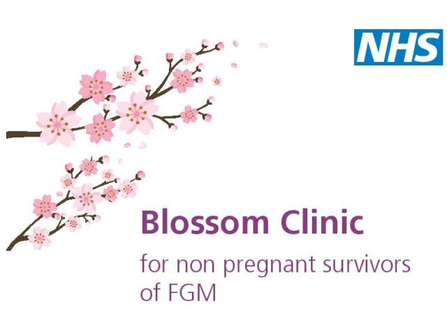 Blossom Clinic for non pregnant survivors of FGM logo